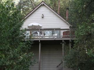 Dog friendly chalet near the lake- foosball, loft/NO HOT TUB