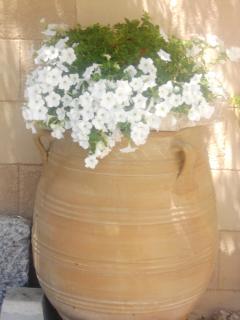 Nice flowerpot