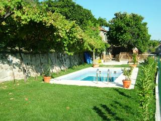 Charming 3bd country house,great view Douro valley