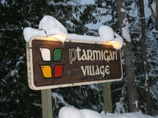 Welcome to Ptarmigan Village