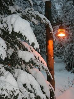Winter in Ptarmigan Village