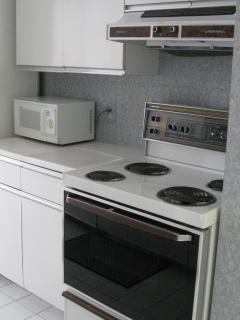 The electric stove and microwave are on one side; a full counter is on the opposite of the kitchen