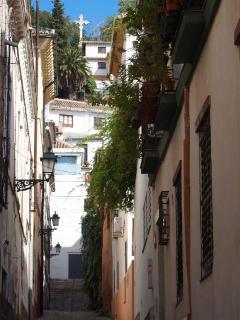 Pedestrian Street view