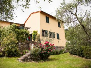Rental with Swimming Pool & Wifi at Gelsomino in Lucca