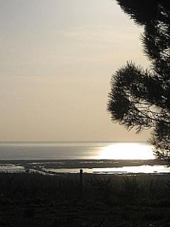 Estuary view from front door