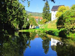 Maison Bellevue , Munster-Alsace-fr, free wifi and parking,lake, barbecue