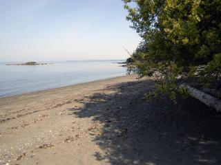 Beach Walk, Lummi Island