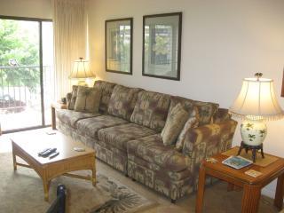 Large Sofa Sleeper