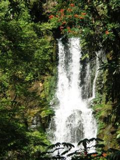 2nd waterfall on Kahoa Street