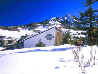 Ideal for a Couples' Retreat - Close to Shops & Restaurants (1318), Crested Butte