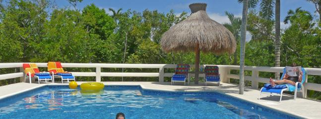Tropical pool complete with a swim bed, 2 pool bars and your own private palapa