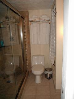Master suite bath has a gorgeous remodeled Walk In Shower.