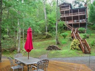 BEARS NEST- 3BR/3BA- CABIN SLEEPS 10, LOCATED ON THE TOCCOA RIVER, GAS & CHARCOAL GRILL, HOT TUB, FIRE PIT, DECK OVER THE RIVER, SATELLITE RADIO, WIFI, NETFLIX ONLY, WII CONSOLE, PET FRIENDLY! STARTING AT $220 A NIGHT, Blue Ridge