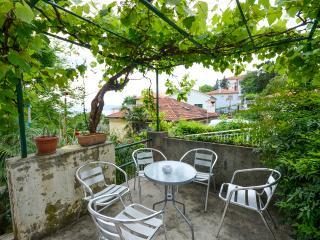 Apartments Andrijana - 61632-A2, Rijeka