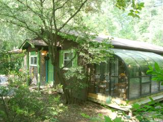 Luxury Cabin/Forest/Creek/Hot Tub/FP/Kid Friendly!, Hendersonville