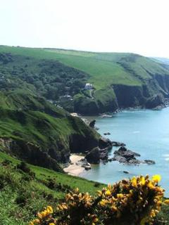 Explore the All Wales Coastal Path, Wathing for Dolphins and Seals en-route