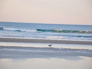 BRAND NEW 4 BEDROOM 3 BATH DIRECT OCEAN FRONT WINTER SPECIALS..., Daytona Beach