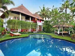 Angel Villa - NEW - luxury, space, privacy, Seminyak