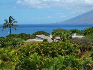 Wailea Ekolu #804 Best Panoramic Ocean View 1Bd/2Ba Private location Sleeps 4