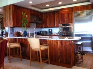 A very modern kitchen with custom Koa cabinets