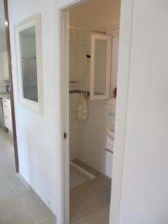 Bathroom No 2 which is smaill with shower, wash basin and toilet