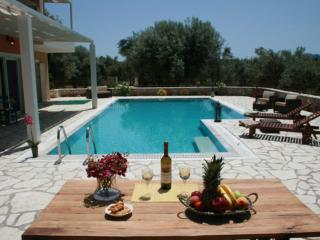 Private secluded villa with very big swimming pool, Nidri
