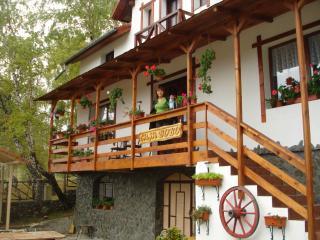 Casa Bobo, Baia de Fier