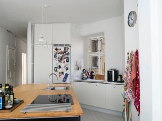Spacius open kitchen
