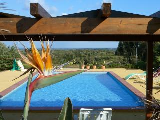 Casa Mimosa Silence in the middle of nature, close to the beach, Santiago do Cacem