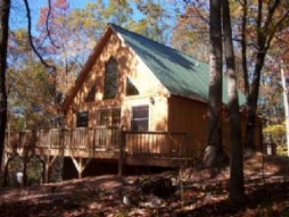 The Cabin In The Trees!