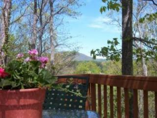 Eagles Landing within 15 minutes of Downtown Asheville, Great Family Retreat on