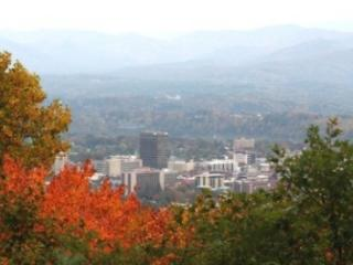 Fabulous mountain views with wood burning fireplaces 6 minutes to Asheville