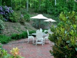 Celebration Vacation Home - 6 Minutes to downtown Asheville and Biltmore Estate,