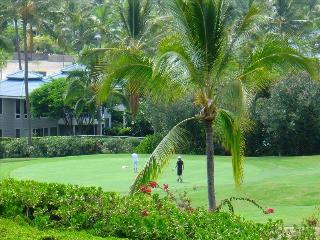 Best Kona Vacation - Golf, Scuba , Kayak,  Fishing, Kailua-Kona