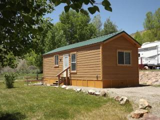 2 Bedroom Cabin near Blue Mesa Reservoir, Gunnison