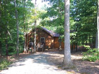 VA Cabin in the Woods