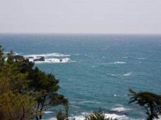Spectacular Oceanside Getaway White Water Views!, Gualala