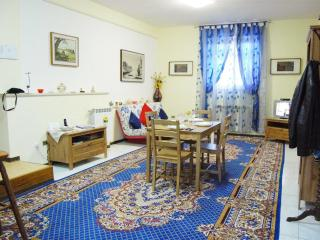 Trastevere-Romantic Apt.100m² WiFi/Parking/Tel.
