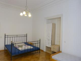 Beautiful spacious flat in Central Prague!