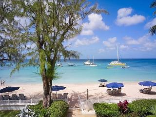 Old Trees 7 - Bella Vista at Paynes Bay, Barbados - Beachfront, Pool, Tropical