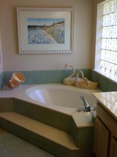 master bath has tub, shower and 2 sinks
