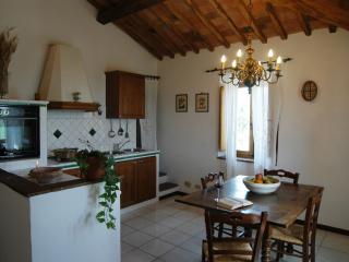 Historic 2 Bedroom Tuscan Apartment, Castelnuovo Berardenga