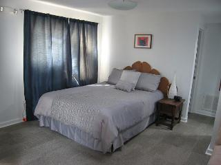 Studio top-floor apt in great DC neighborhood; Bus to Downtown & The Mall