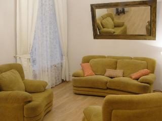 Symphony  2 bed rooms  Apartment on Nevskiy pr.