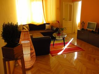 Wine Apartment with huge bath tub/free parking, Budapest