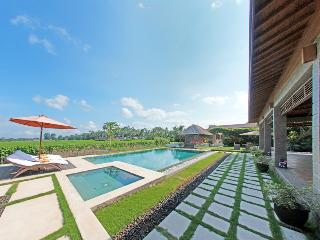 Stunning Rice filed View 3 Bedrooms Villa In Ubud!, Kemenuh