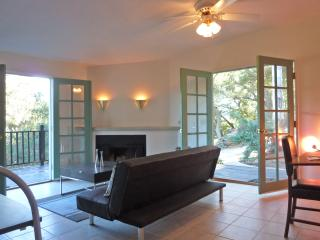 Living room with double french doors and a wood burning fireplace... free wood included!