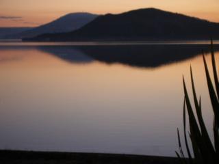 Lake Edge Rotorua New Zealand