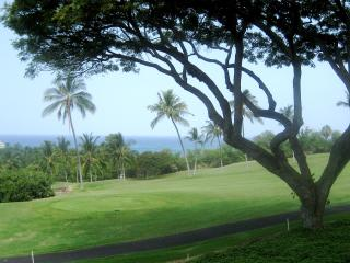 Ocean and golf view from the lanai, under the monkeypod tree
