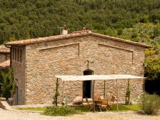 Villa Il Cavato a soli 18 km. da Firenze, Greve in Chianti